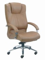 Copy of ergonomic-office-chair-prevents-back-problems